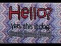 Hello? - 5x7 - cotton floss, canvas